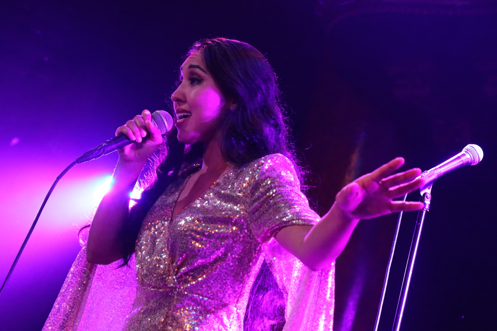 This Non Stop Three Hour Event Featured A Dynamic Cast Of 35 Local Singers Performing Super Selection 70s And Disco Hits To Digital Music